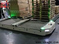 In a home appliance company pallet transfer roller conveyor autonomous vehicle